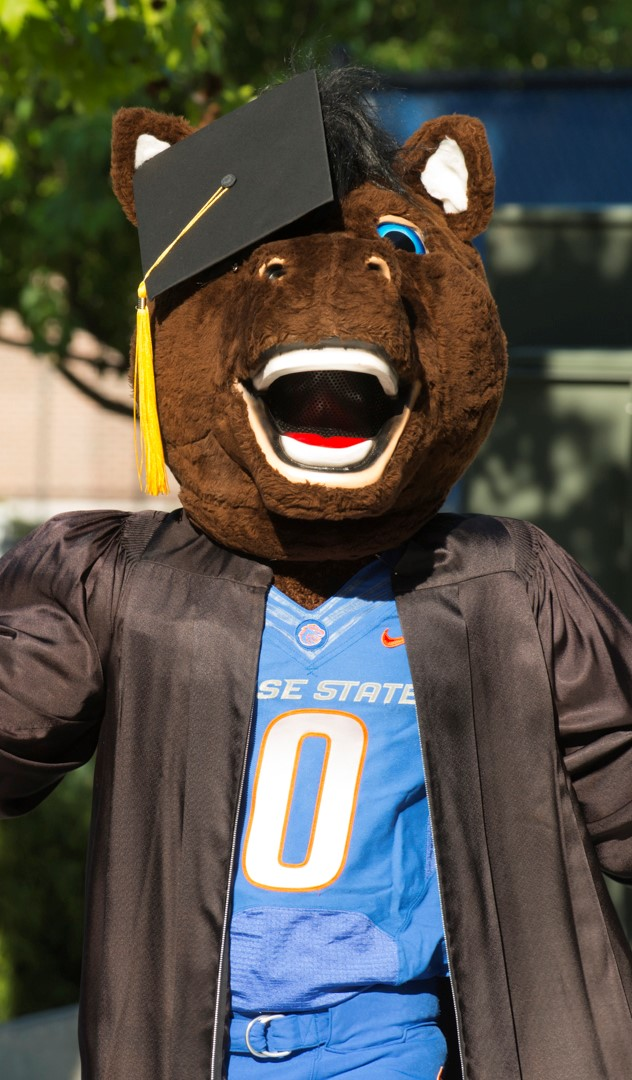 Buster Graduating Vertical